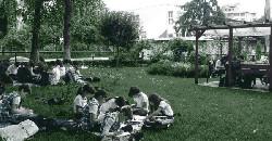 eminescu educatie in aer liber 1